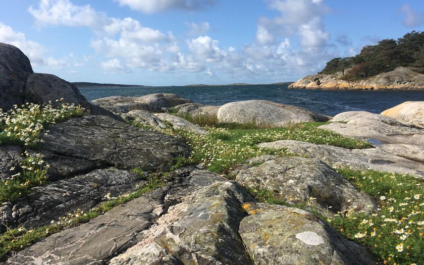 Ein sonniger Septembertag am Meer in Südschweden.